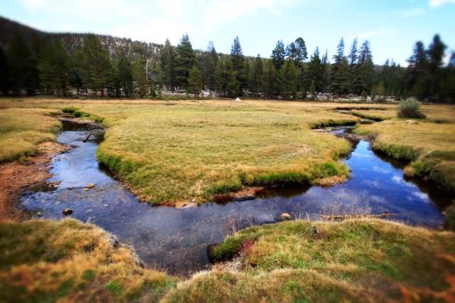 Golden Trout Wilderness 19