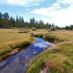Golden Trout Wilderness 20