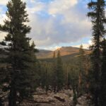 Golden Trout Wilderness 23