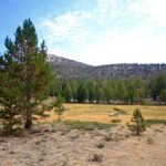 Golden Trout Wilderness 7