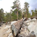 Golden Trout Wilderness 9