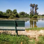 Rancho Jurupa Park in Riverside