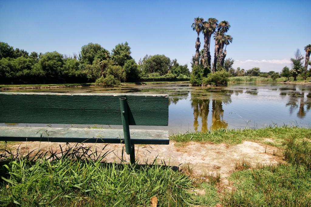 Rancho Jurupa Park In Riverside California Through My Lens
