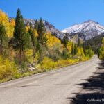 Best Places for Fall Colors in California