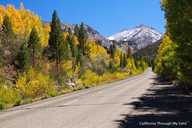 Fall in California 2