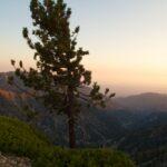 Mt Baldy Night Hike 18