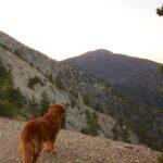 Mt Baldy Night Hike 20