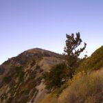 Mt Baldy Night Hike 9