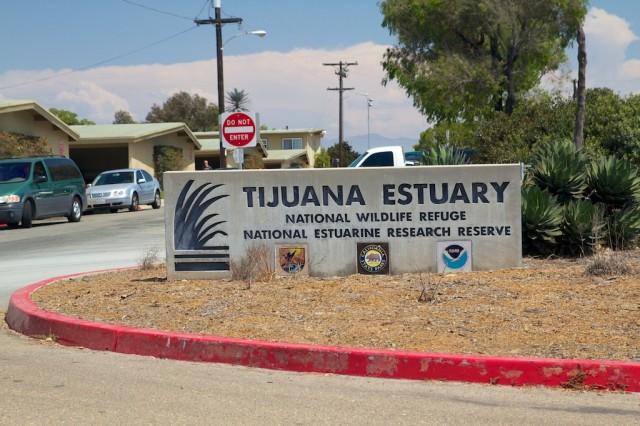 Tijuana Estuary 1