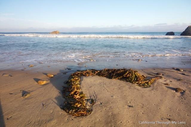 Leo Carrillo Beach 3