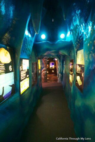 Creation Museum 12