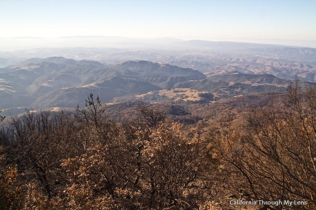 Mt Diablo State Park Vistas Hikes A Rock Forrest