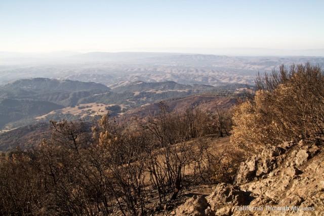 Mt Diablo State Park 13