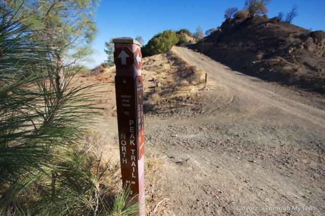 Mt Diablo State Park 18