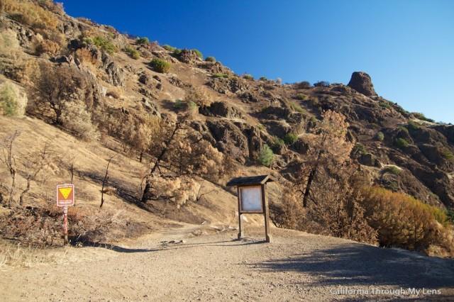 Mt Diablo State Park 7