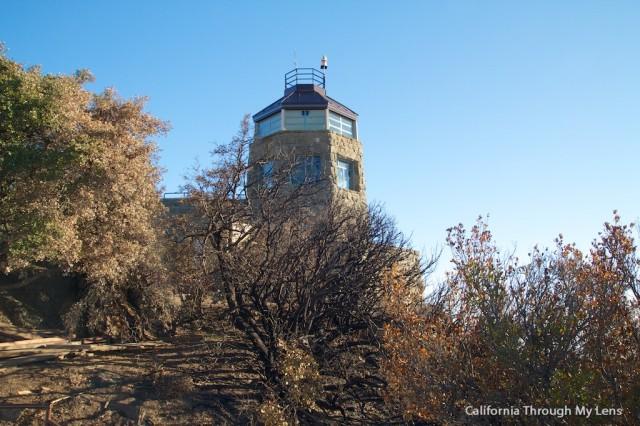 Mt Diablo State Park 9