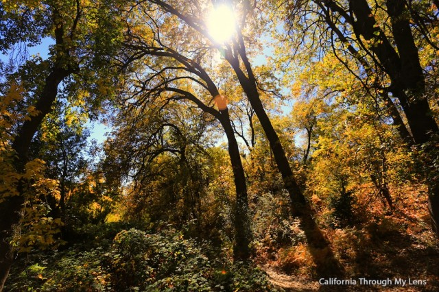 Best places for fall colors in california california for Oak glen park