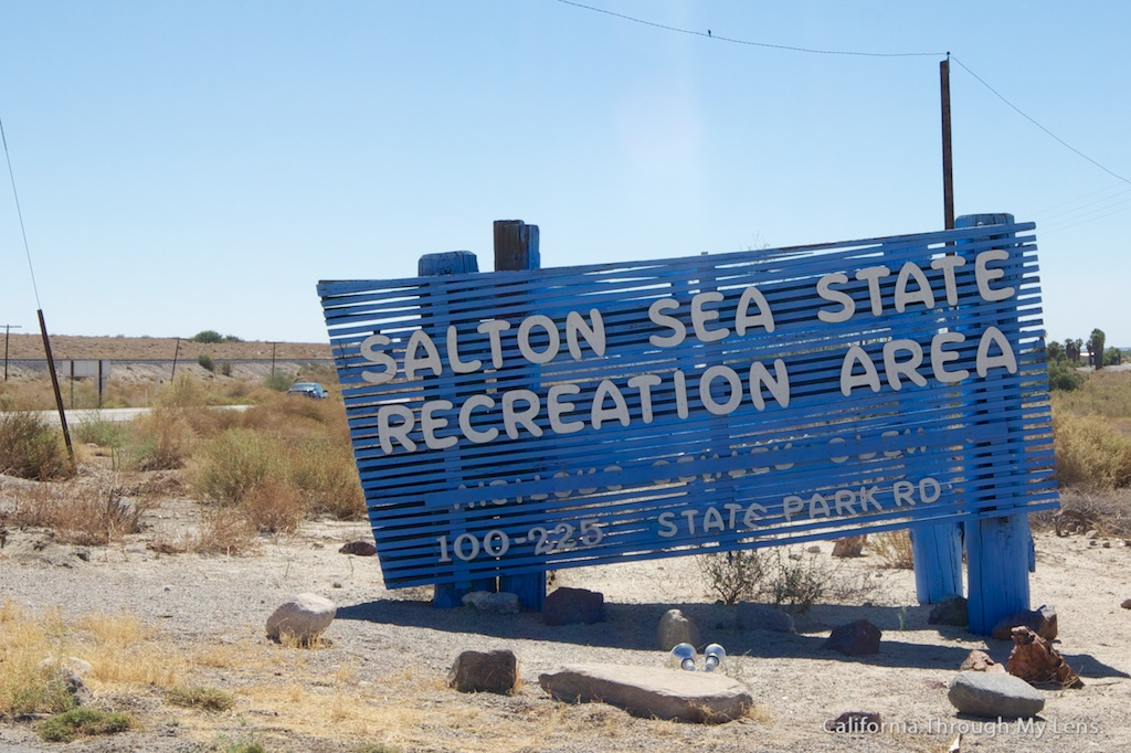 Salton sea attractions art mud volcanoes and dead fish for Best places to fish in california