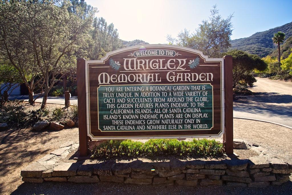 Wrigley botanical gardens memorial on catalina island california through my lens for Wrigley memorial botanic garden