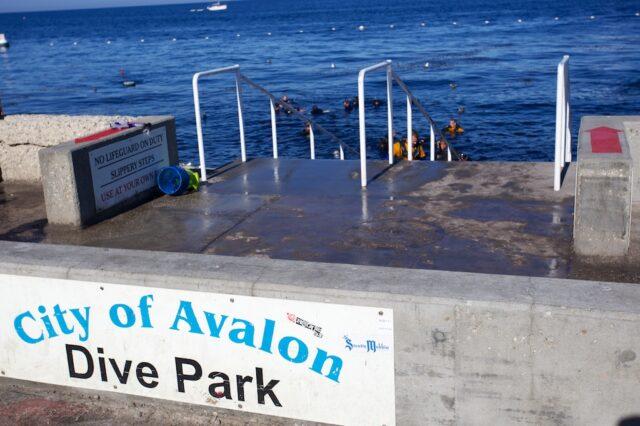 Avalon Catalina 13