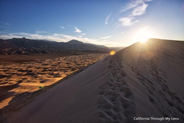Kelso Dunes 11