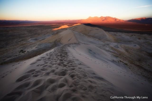 Kelso Dunes 20