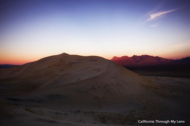 Kelso Dunes 21