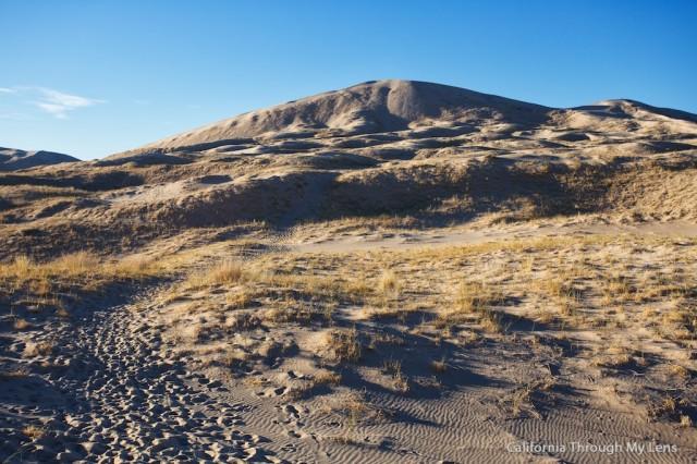 Kelso Dunes 4