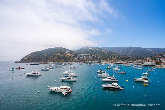 18d6960cd0 If you are heading to Catalina though here are my recommendations for how  to spend a day trip on the island, specifically in the town of Avalon.