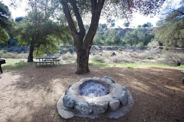 Bogart Park 13