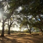 Bogart Park: Camping, Fishing & Hiking in Cherry Valley