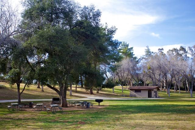 Bogart Park 30