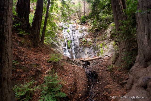Pfeiffer Falls 15