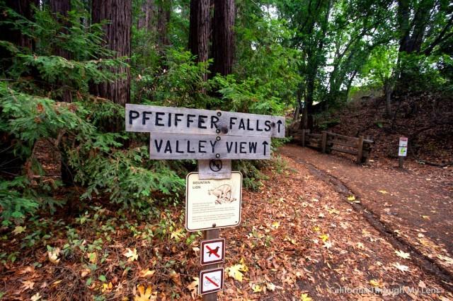 Pfeiffer Falls 9