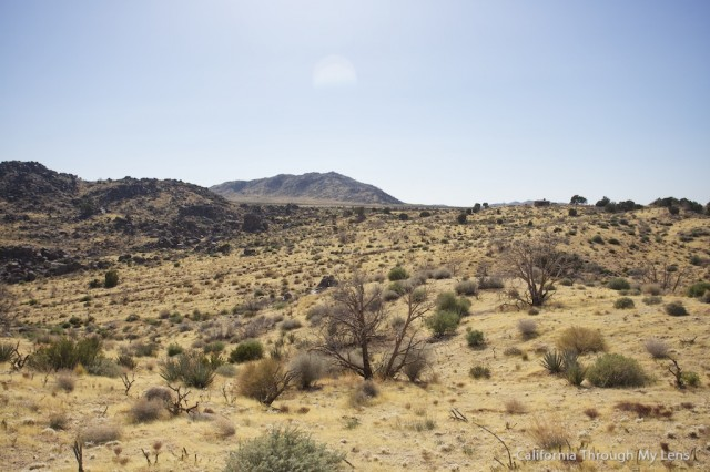 Rock Springs Trail 1