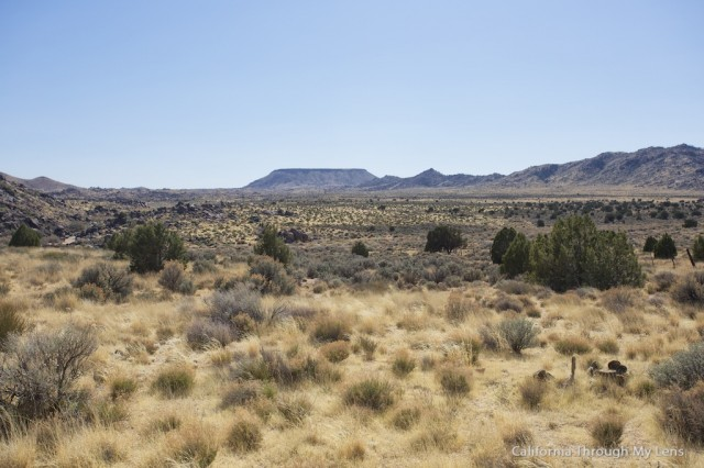 Rock Springs Trail 15