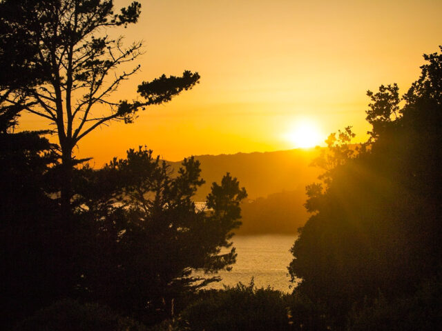 Hipcamp Angel Island Sunset