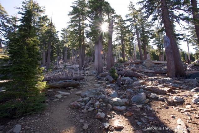 Sierra Buttes Fire Outlook 31