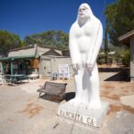 Ranchita Yeti: The California Desert Bigfoot