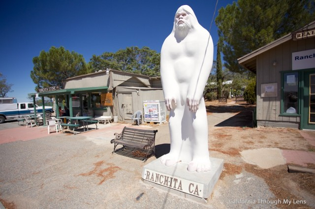Ranchita Yeti The California Desert Bigfoot California
