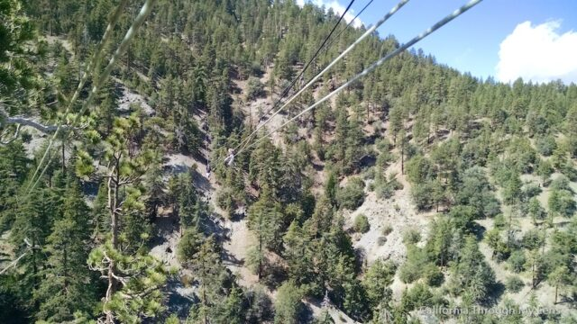 Big Pines Zipline 1 (1)