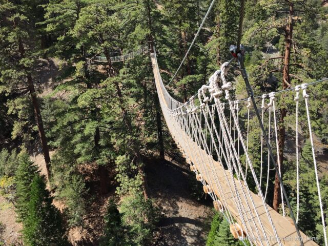 Big Pines Zipline: Soaring Over Wrightwood at 50 MPH | California ...