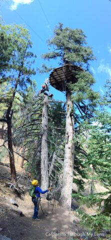 Big Pines Zipline 9