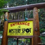 The Mystery Spot in Santa Cruz: Altered Reality or a Clever Gimic