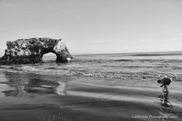 Natural Bridges State Beach 3