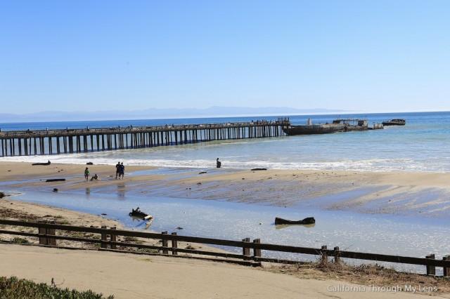 Seacliff Shipwreck Pier 20