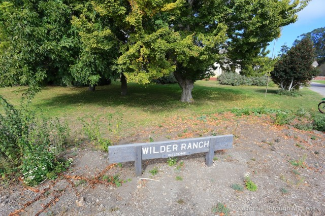 Wilder Ranch State Park 15
