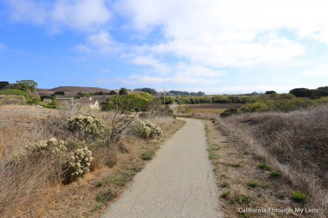Wilder Ranch State Park 24