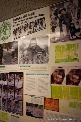 bigfoot discovery museum1