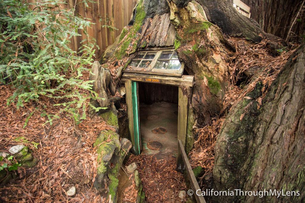 Eternal Treehouse Fun Roadside Stop For Kids In Avenue Of